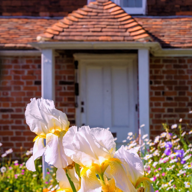 """Cottage Garden"" stock image"