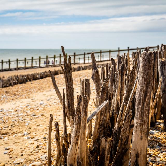 """""""Pevensey Bay"""" stock image"""