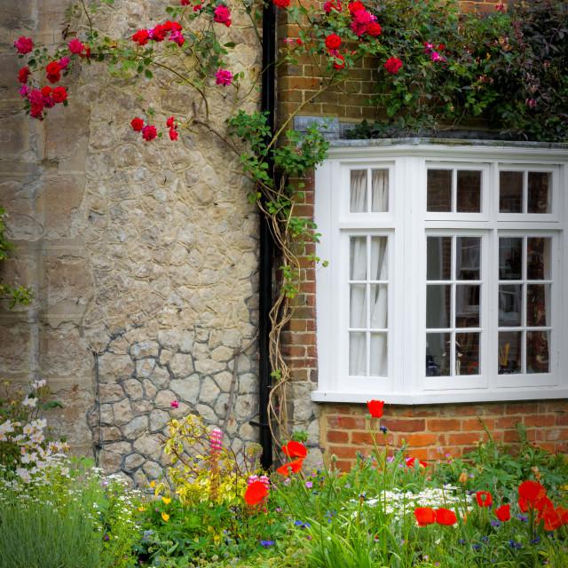 """""""Colourful Garden"""" stock image"""
