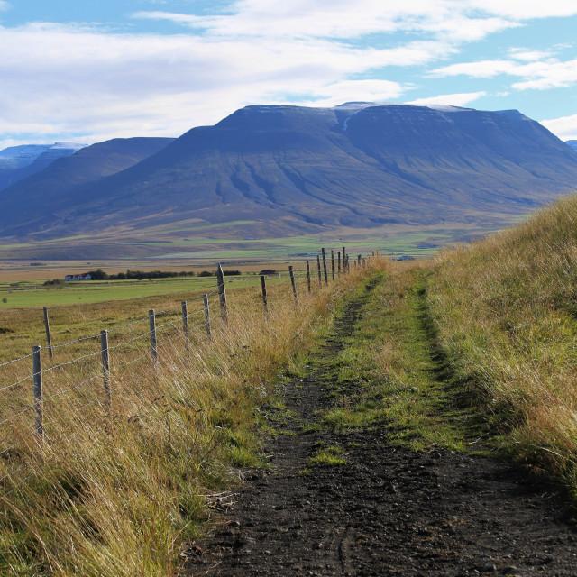 """""""Trail through Skagafjordur Iceland"""" stock image"""