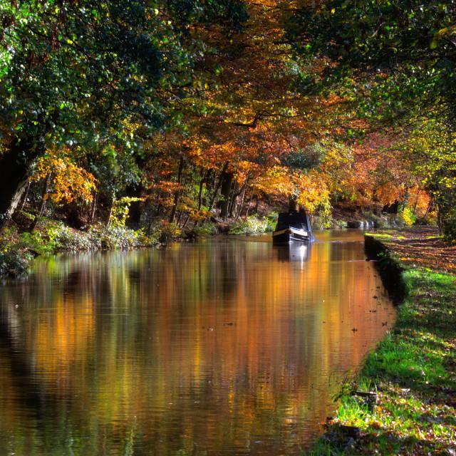 """Autumn in Low Bradley"" stock image"