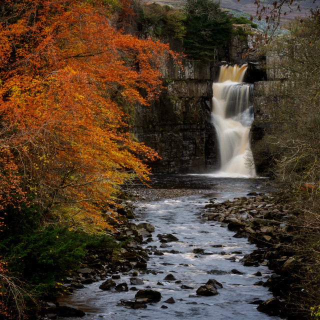 """""""High Force"""" stock image"""