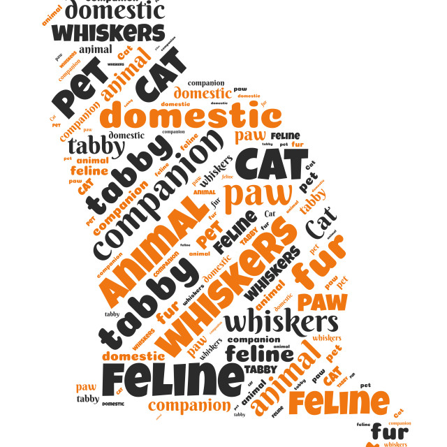 """""""Illustration of a word cloud with words representing cats"""" stock image"""