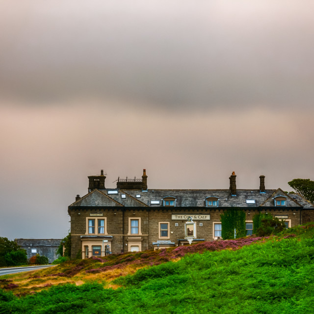 """Cow and Calf Hotel, Ilkley"" stock image"