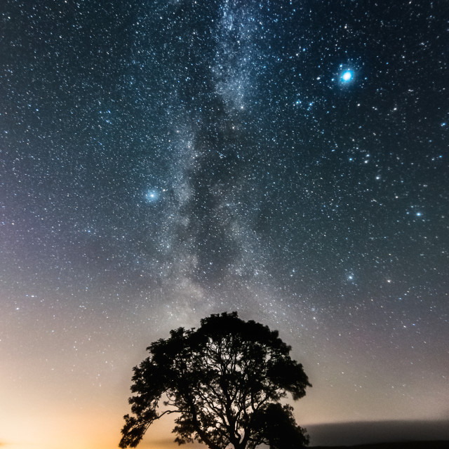 """Milky Way & the Lonely Tree on the Limestone Pavement"" stock image"