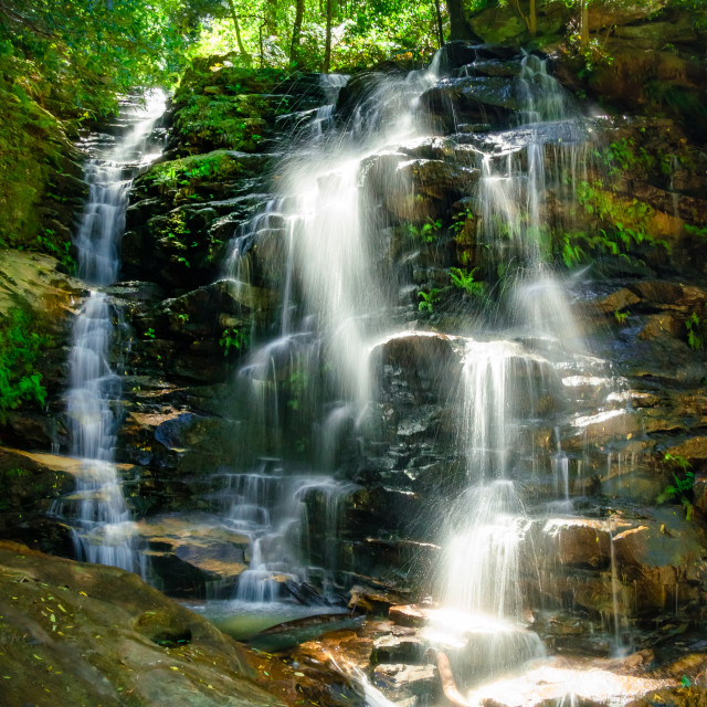 """Blue Mountains Waterfall"" stock image"