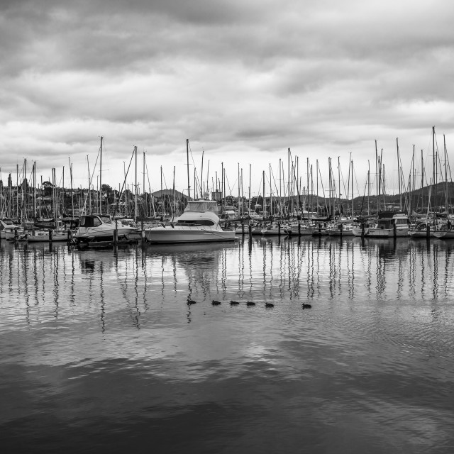 """Sandy Bay, Tasmania"" stock image"