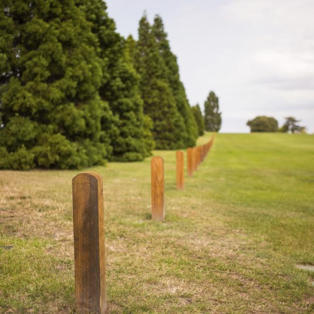 """Cenotaph, Hobart"" stock image"