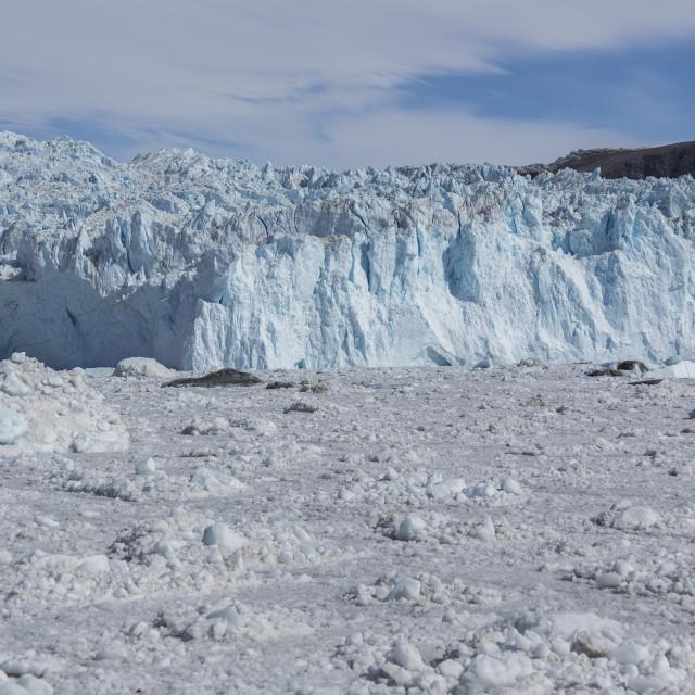 """The glaciers, Greenland"" stock image"