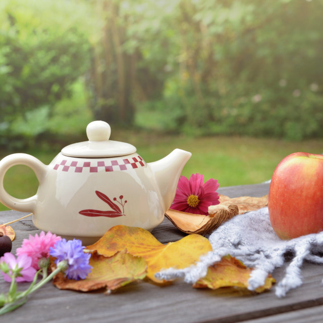 """""""teapot on a wooden table in garden among autumnal leaf and red apple on wool scarf"""" stock image"""