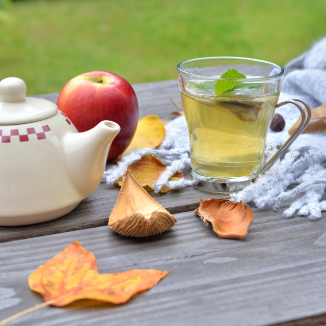 """""""cup of tea on a wooden table in gardenwith teapot among autumnal leaf and red apple on wool scarf"""" stock image"""