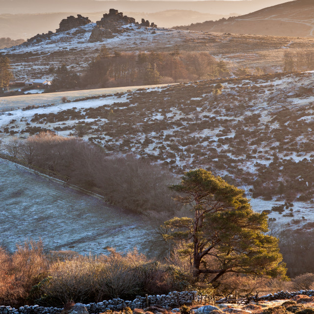 """""""Hound Tor from afar"""" stock image"""