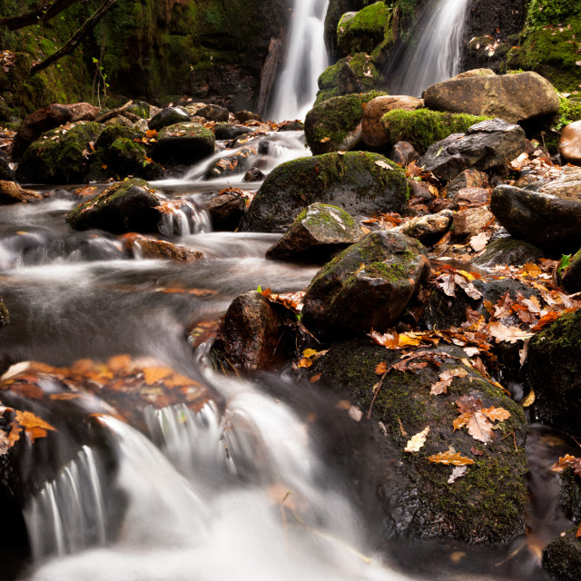 """""""Twin Falls on the Venford Brook"""" stock image"""