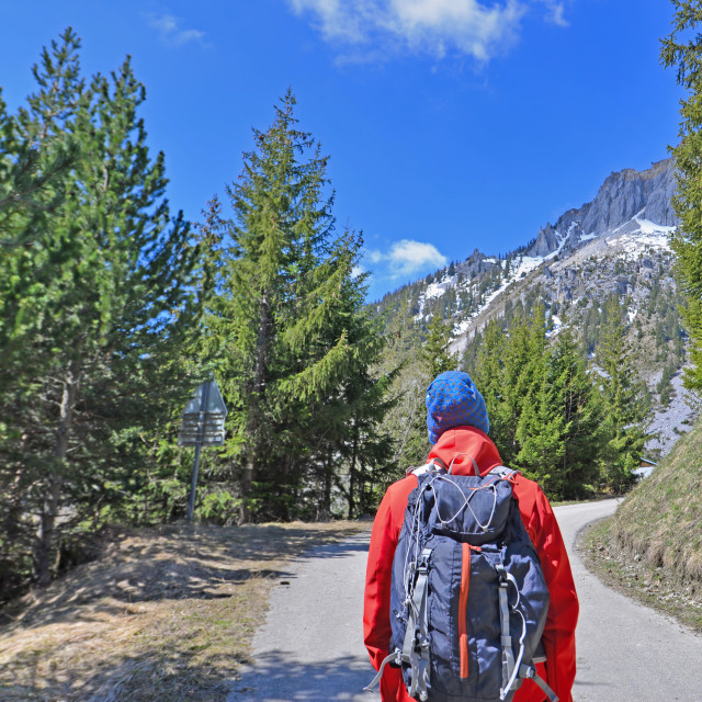 """hiker seen from back with backpack on a road crossing alpine mou"" stock image"