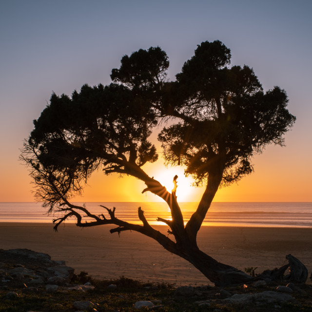 """Sunset at beach"" stock image"