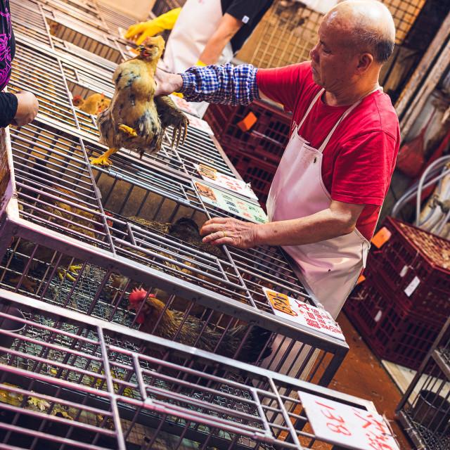 """""""Market, Hong Kong"""" stock image"""