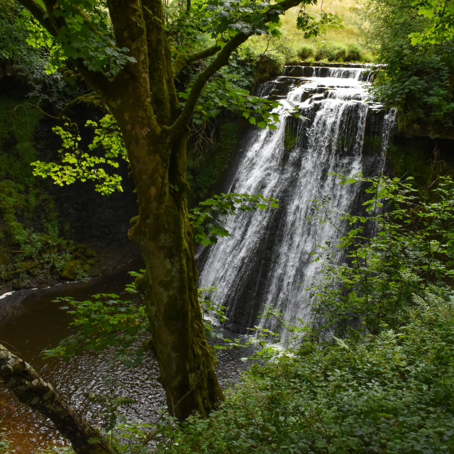 """""""Aysgill Force on Gayle Beck"""" stock image"""