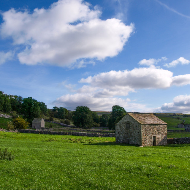 """""""Barns in Yorkshire Dales"""" stock image"""