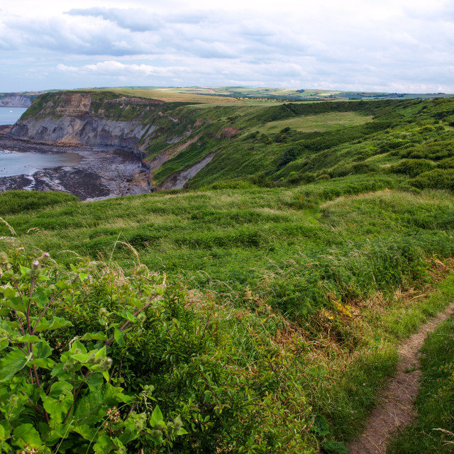"""""""Clifftop Path North Yorkshire"""" stock image"""
