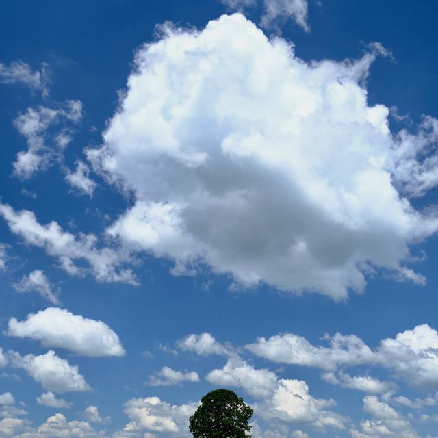 """Summer Cloud"" stock image"