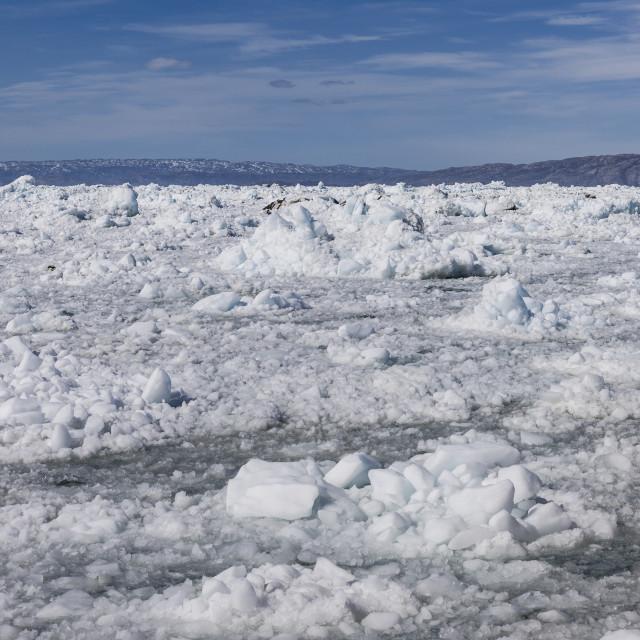 """""""A sea of ice, Ilulissat"""" stock image"""