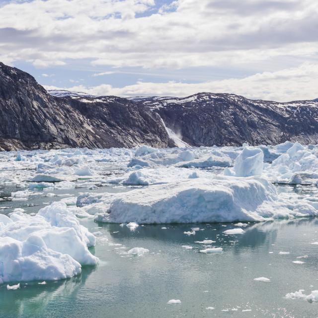 """A sea of floating ice, Ilulissat"" stock image"