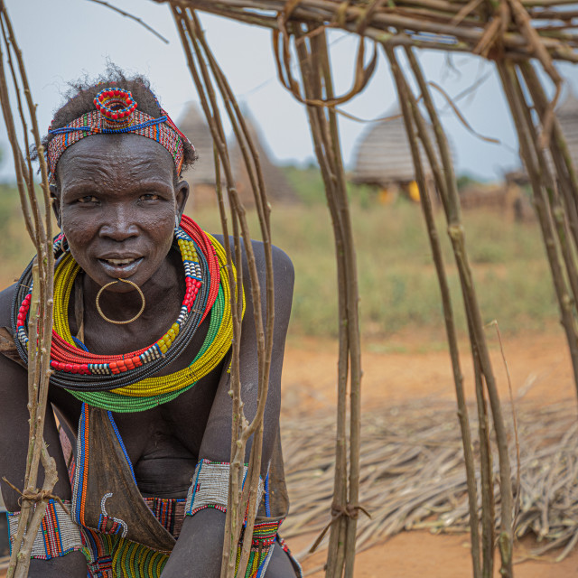 """A Toposa woman building a traditional house"" stock image"