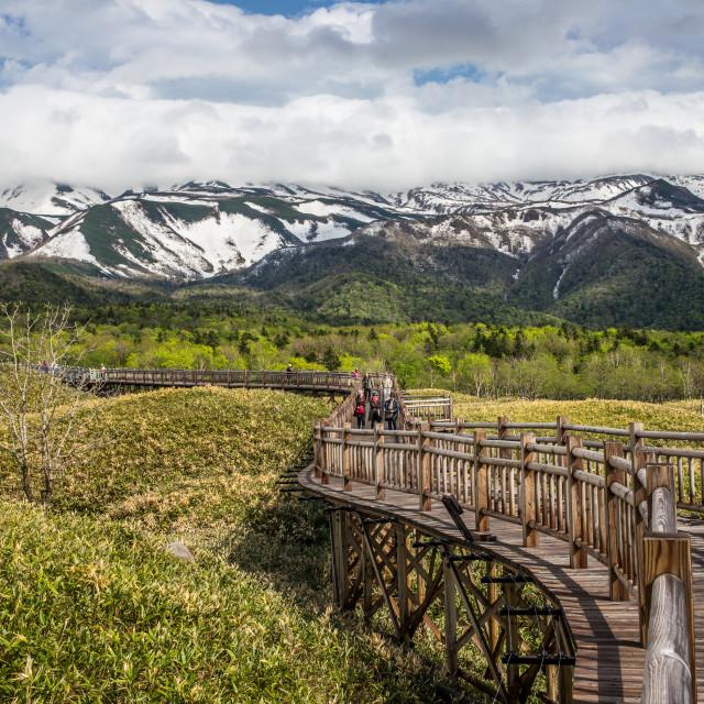 """""""Shiretoko National Park, Hokkaido, Japan"""" stock image"""