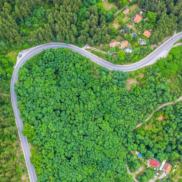 """""""Aerial view of winding road trough the dense woods."""" stock image"""