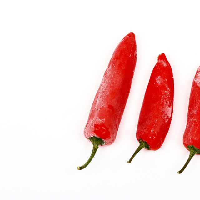 """Three frozen red chilli peppers"" stock image"