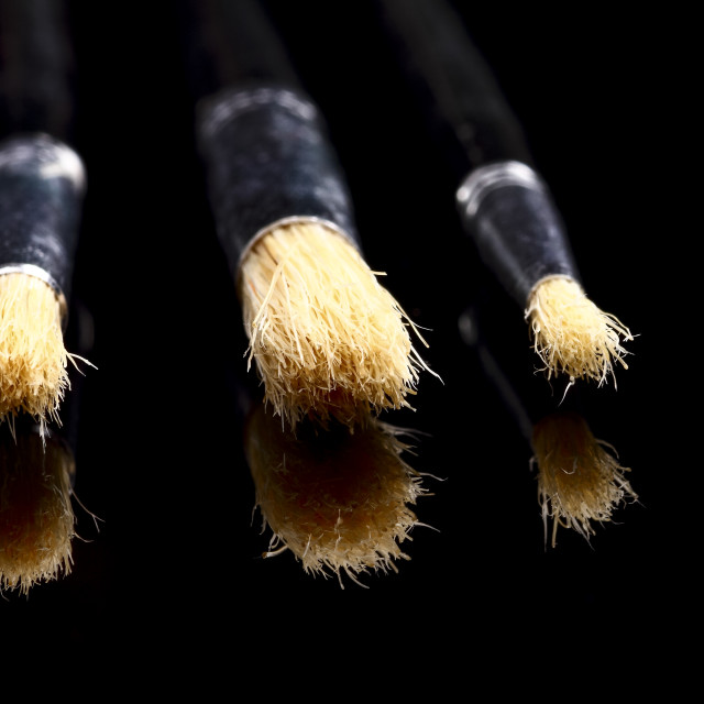 """selection of artists bristle paint brushes"" stock image"