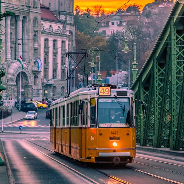 """Sunset in Liberty bridge in Budapest"" stock image"