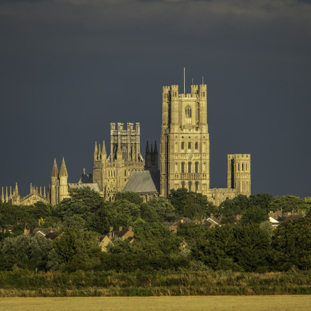 """""""View of Ely Cathedral on a summer evening, 6th July 2020"""" stock image"""