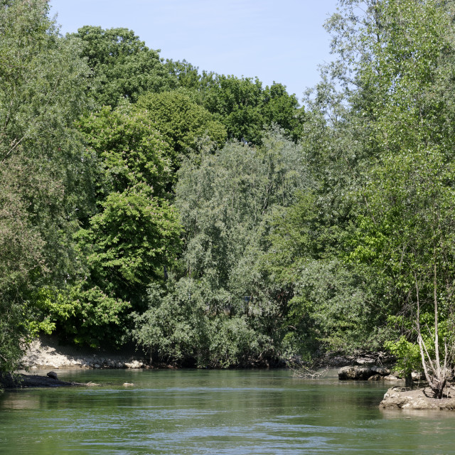 """""""Chelles island nature reserve"""" stock image"""
