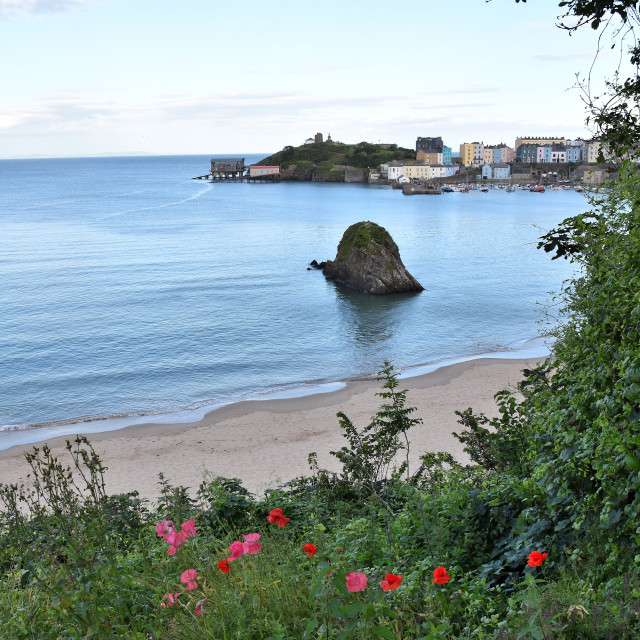 """""""A view of Goscar Rock on the North beach in Tenby"""" stock image"""