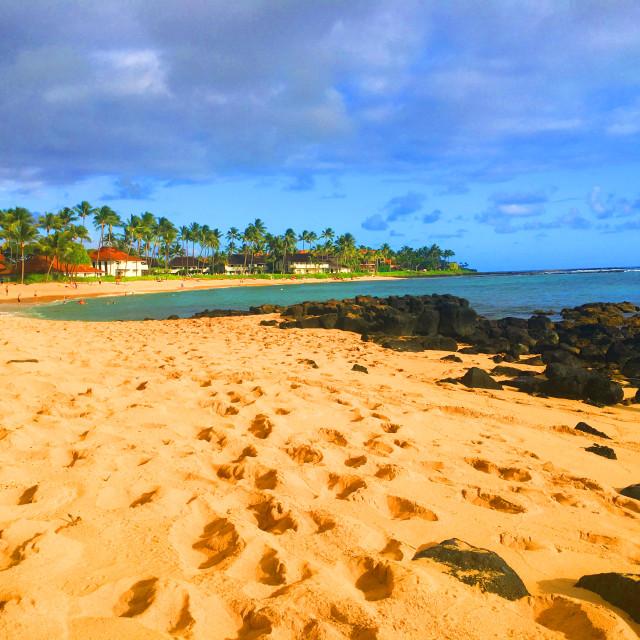 """Hawaiian beach without people"" stock image"