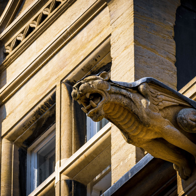 """Gargoyle from Gonville & Caius College, University of Cambridge."" stock image"