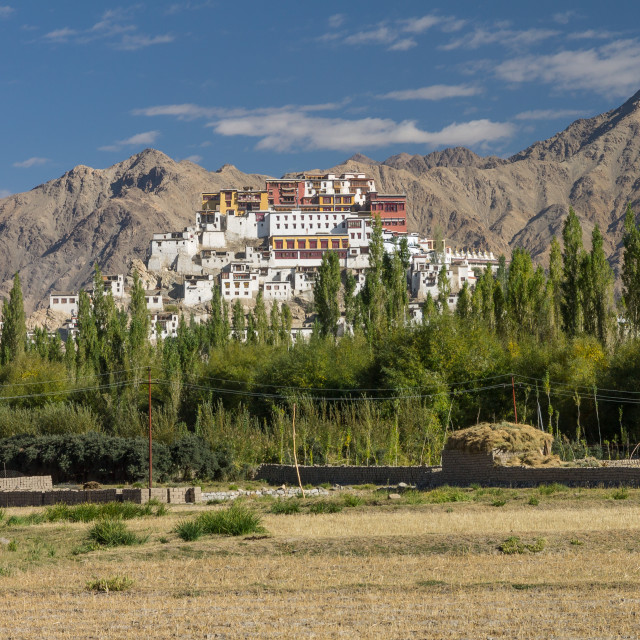 """Thikse Gompa seen from a distance"" stock image"