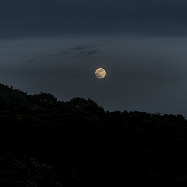 """Full Moon night"" stock image"