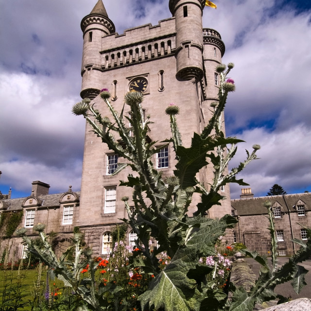 """""""Balmoral Castle Clock Tower"""" stock image"""