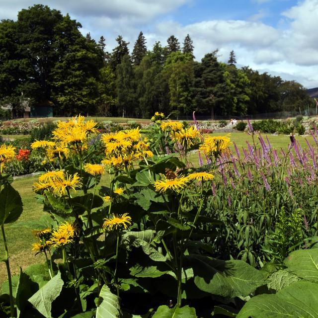 """""""Balmoral Castle Garden"""" stock image"""