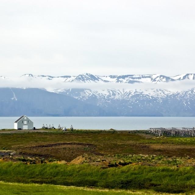 """""""Icelandic coastal landscape"""" stock image"""