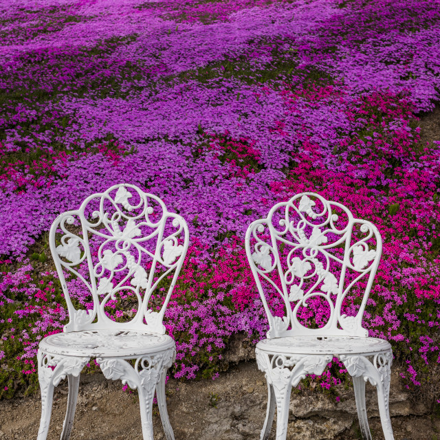 """Two white chairs, Hokkaido, Japan"" stock image"
