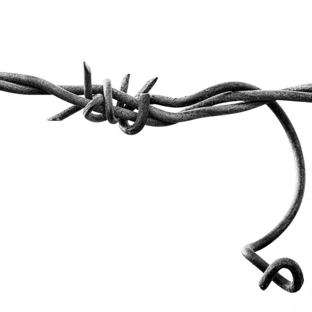 """""""Barbed wire with a twist"""" stock image"""