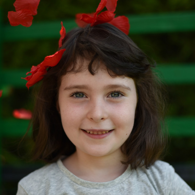 """""""Portrait of little girl among red petals on a dark green backgro"""" stock image"""