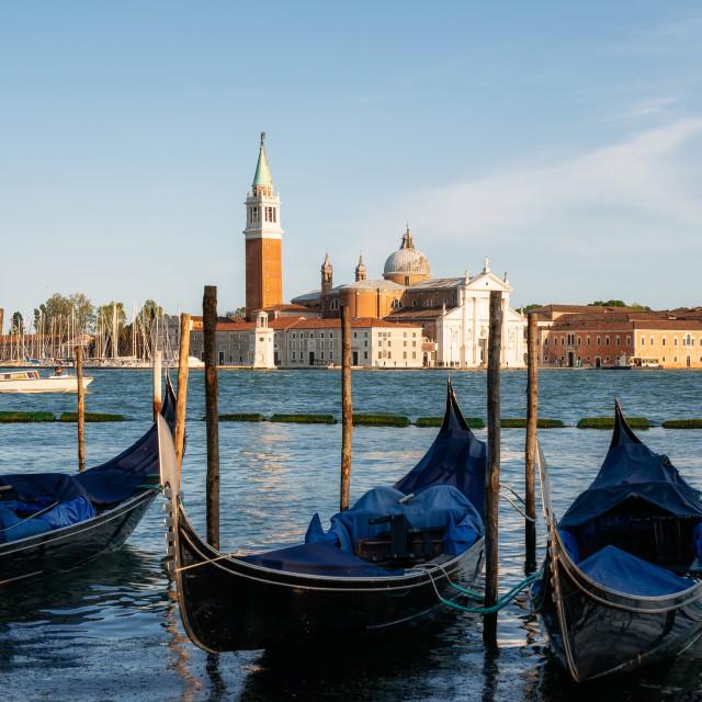 """""""Gondolas against boats and San Giorgio Maggiore island, Venice, Italy"""" stock image"""