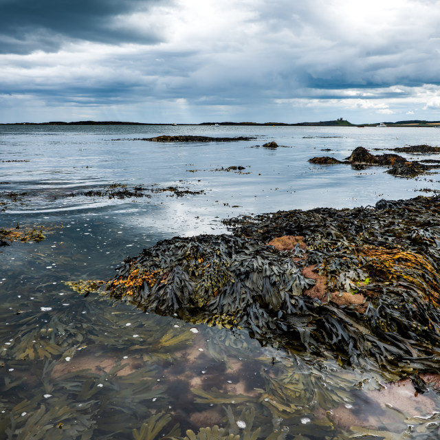 """""""Low Newton-by-the-Sea, Under a Heavy Sky"""" stock image"""