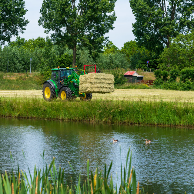 """Harvesting bales of hay 5"" stock image"