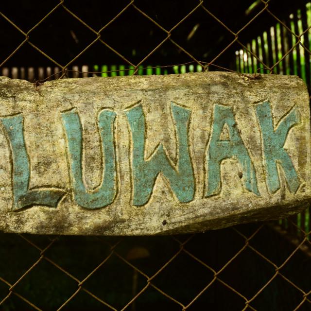 """""""Luwak Coffee Sign"""" stock image"""