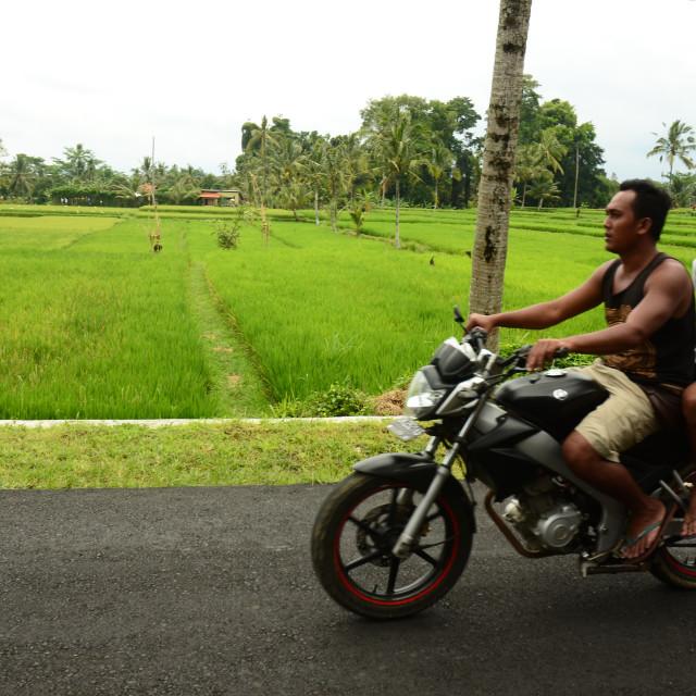 """Bali Transport"" stock image"